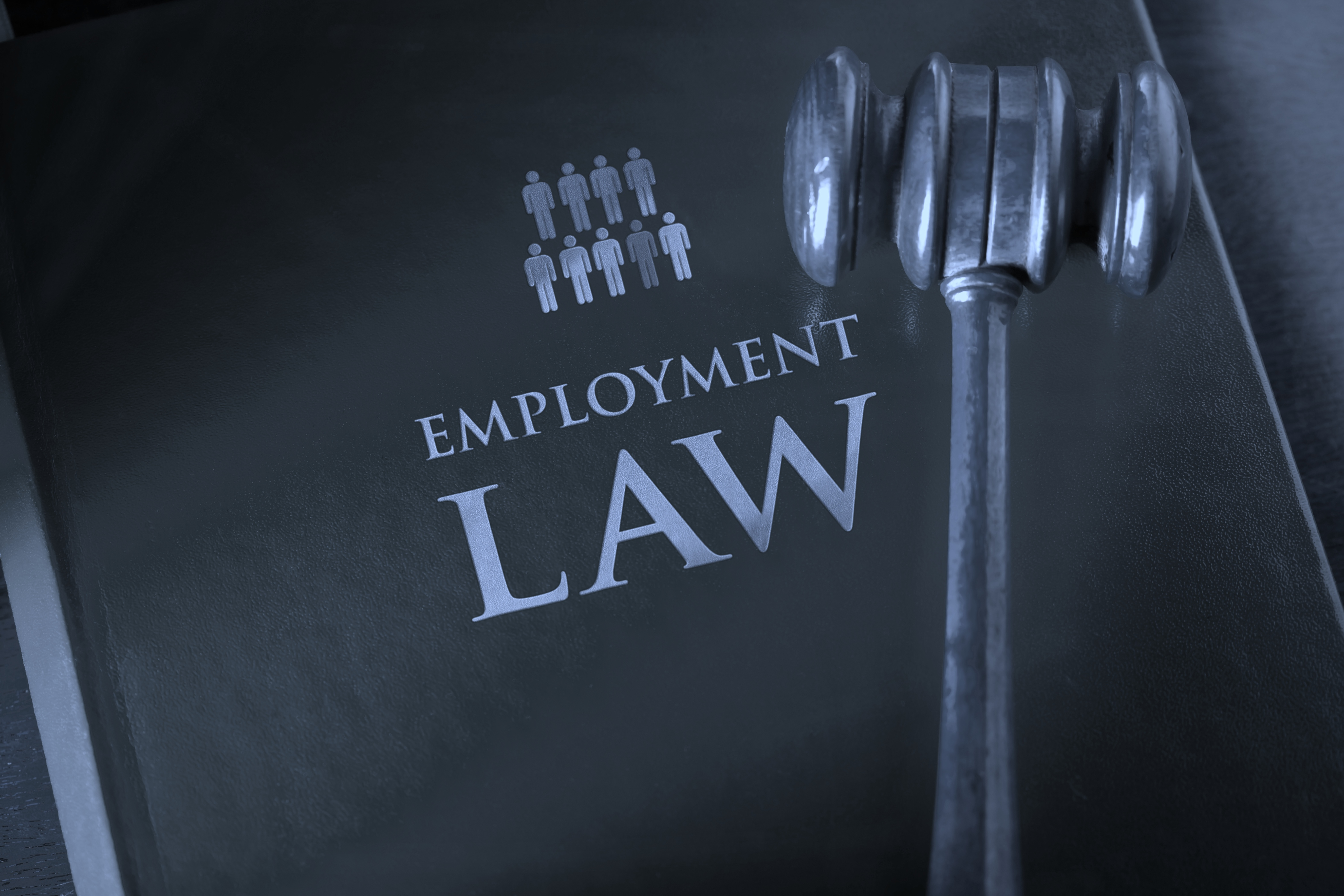 employment legislation Department of labour of south africa is responsible for creating a conducive working environment, working conditions, basic conditions, minimum wages, compensation of.